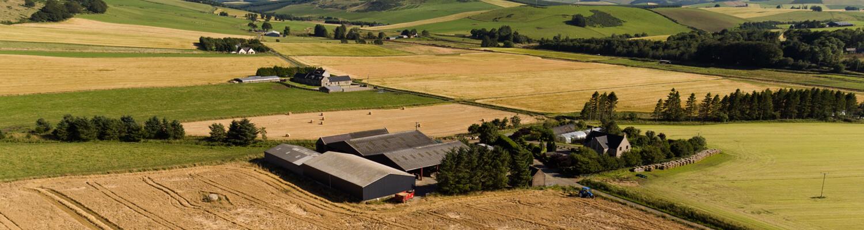 استاندارد حسابداری شماره ۲۶ – فعالیتهای کشاورزی