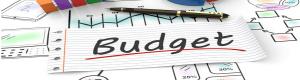 اهمیت بودجه برای دولت